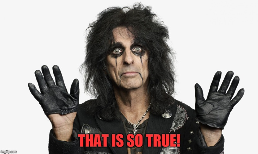 Alice Cooper | THAT IS SO TRUE! | image tagged in alice cooper | made w/ Imgflip meme maker