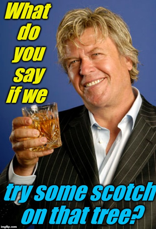 Ron White 2 | What do you say if we try some scotch on that tree? | image tagged in ron white 2 | made w/ Imgflip meme maker