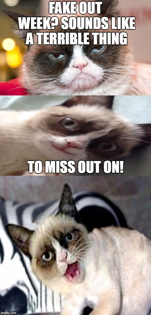 I want to encourage people to participate in One_Girl_Band's Fake Out Week - there's a couple of days left. | FAKE OUT WEEK? SOUNDS LIKE A TERRIBLE THING TO MISS OUT ON! | image tagged in bad pun grumpy cat,memes,fake out,fake out week,imgflip,grumpy cat | made w/ Imgflip meme maker