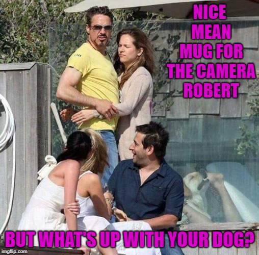 That's one hell of a photobomb there dog...LOL | NICE MEAN MUG FOR THE CAMERA ROBERT BUT WHAT'S UP WITH YOUR DOG? | image tagged in photobombs,memes,robert downey jr,funny,dogs,animals | made w/ Imgflip meme maker
