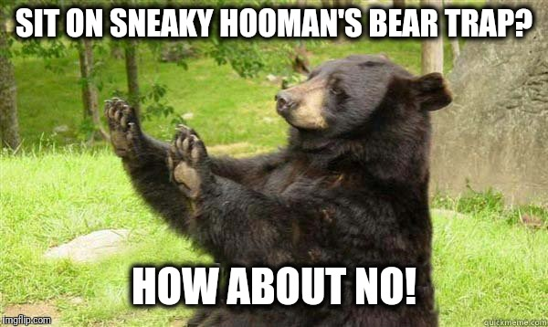 How about no bear without text | SIT ON SNEAKY HOOMAN'S BEAR TRAP? HOW ABOUT NO! | image tagged in how about no bear without text | made w/ Imgflip meme maker