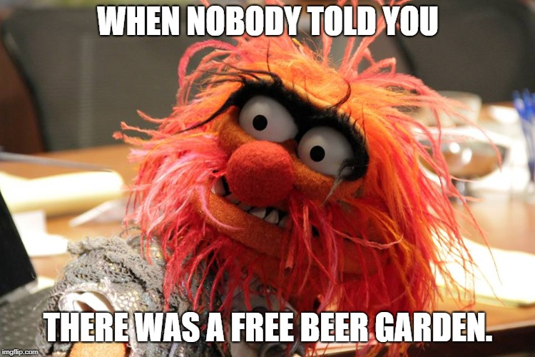 beer animal | WHEN NOBODY TOLD YOU THERE WAS A FREE BEER GARDEN. | image tagged in animal,cold beer here,muppets,drinking | made w/ Imgflip meme maker