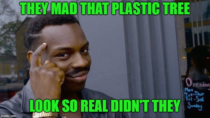 Roll Safe Think About It Meme | THEY MAD THAT PLASTIC TREE LOOK SO REAL DIDN'T THEY | image tagged in memes,roll safe think about it | made w/ Imgflip meme maker