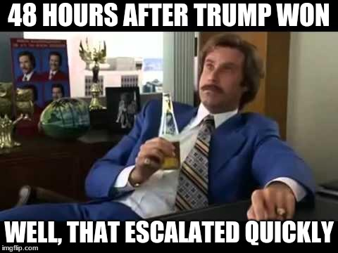 Well That Escalated Quickly Meme | 48 HOURS AFTER TRUMP WON WELL, THAT ESCALATED QUICKLY | image tagged in memes,well that escalated quickly | made w/ Imgflip meme maker