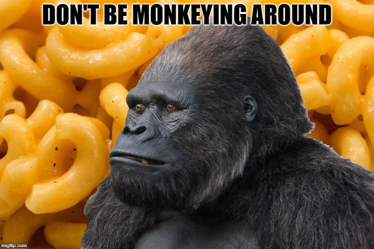 DON'T BE MONKEYING AROUND | made w/ Imgflip meme maker