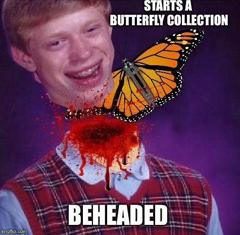 From convo with dashhopes, stole this from him muahahahahaha | STARTS A BUTTERFLY COLLECTION BEHEADED | image tagged in bad luck brian,butterflies,dead,funny memes,dashhopes | made w/ Imgflip meme maker