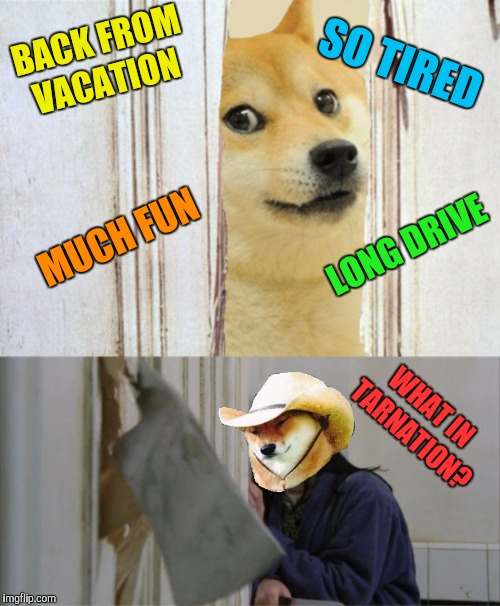 I'm Baaaack! | BACK FROM VACATION WHAT IN TARNATION? MUCH FUN SO TIRED LONG DRIVE | image tagged in memes,vacation,driving,what in tarnation,the shining | made w/ Imgflip meme maker