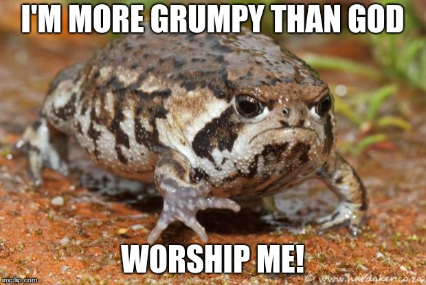 Grumpy Toad | I'M MORE GRUMPY THAN GOD WORSHIP ME! | image tagged in memes,grumpy toad | made w/ Imgflip meme maker