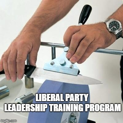 knife sharpening wheel | LIBERAL PARTY LEADERSHIP TRAINING PROGRAM | image tagged in knife sharpening wheel | made w/ Imgflip meme maker