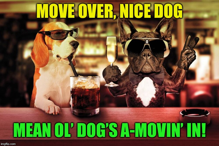 MOVE OVER, NICE DOG MEAN OL' DOG'S A-MOVIN' IN! | made w/ Imgflip meme maker