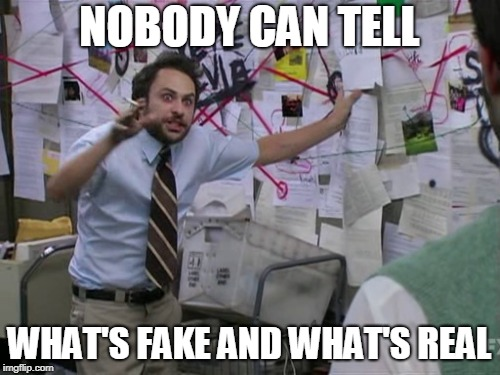 Charlie Day | NOBODY CAN TELL WHAT'S FAKE AND WHAT'S REAL | image tagged in charlie day | made w/ Imgflip meme maker