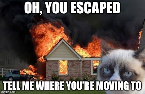 Burn Kitty | OH, YOU ESCAPED TELL ME WHERE YOU'RE MOVING TO | image tagged in memes,burn kitty,grumpy cat | made w/ Imgflip meme maker