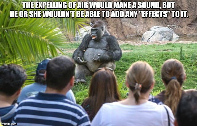 "THE EXPELLING OF AIR WOULD MAKE A SOUND, BUT HE OR SHE WOULDN'T BE ABLE TO ADD ANY ""EFFECTS"" TO IT. 
