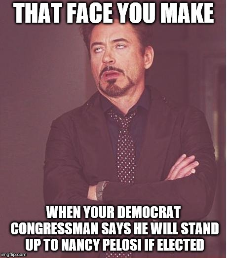 Face You Make Robert Downey Jr Meme | THAT FACE YOU MAKE WHEN YOUR DEMOCRAT CONGRESSMAN SAYS HE WILL STAND UP TO NANCY PELOSI IF ELECTED | image tagged in memes,face you make robert downey jr | made w/ Imgflip meme maker