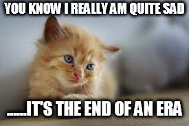 YOU KNOW I REALLY AM QUITE SAD ......IT'S THE END OF AN ERA | image tagged in sad kitty | made w/ Imgflip meme maker