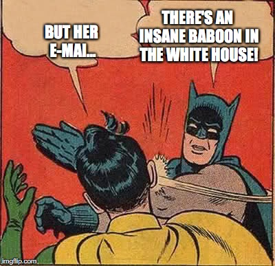 But Her E-Mails | BUT HER E-MAI... THERE'S AN INSANE BABOON IN THE WHITE HOUSE! | image tagged in memes,batman slapping robin,her emails,trump,bobcrespodotcom | made w/ Imgflip meme maker