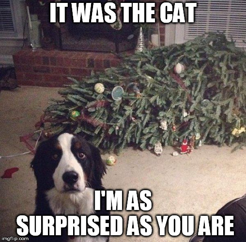 Dog Christmas Tree | IT WAS THE CAT I'M AS SURPRISED AS YOU ARE | image tagged in dog christmas tree | made w/ Imgflip meme maker