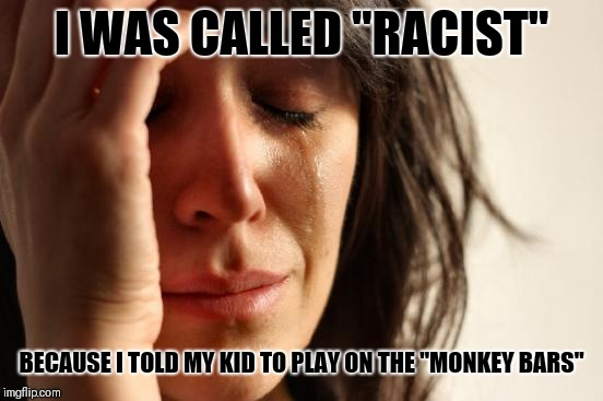 "First World Problems Meme | I WAS CALLED ""RACIST"" BECAUSE I TOLD MY KID TO PLAY ON THE ""MONKEY BARS"" 
