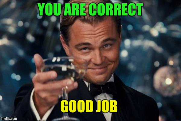 Leonardo Dicaprio Cheers Meme | YOU ARE CORRECT GOOD JOB | image tagged in memes,leonardo dicaprio cheers | made w/ Imgflip meme maker
