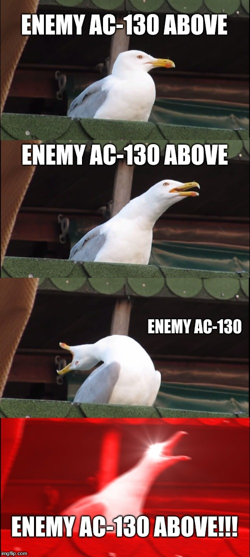 Inhaling Seagull | ENEMY AC-130 ABOVE ENEMY AC-130 ABOVE ENEMY AC-130 ENEMY AC-130 ABOVE!!! | image tagged in memes,inhaling seagull | made w/ Imgflip meme maker