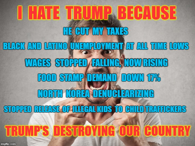 Reasons to hate Trump, the incompetent, bumbling, erratic candidate for impeachment | I  HATE  TRUMP  BECAUSE TRUMP'S  DESTROYING  OUR  COUNTRY HE  CUT  MY  TAXES BLACK  AND  LATINO  UNEMPLOYMENT  AT  ALL  TIME  LOWS NORTH  KO | image tagged in trump,economy,haters,democrats,impeach trump | made w/ Imgflip meme maker