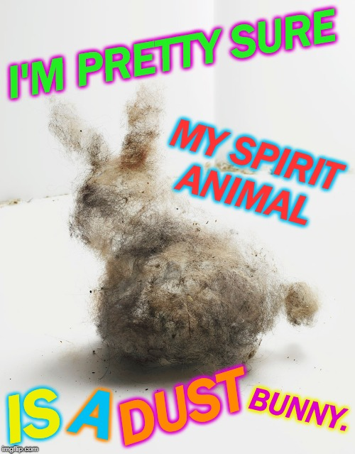 Just judging by my house.  | I'M PRETTY SURE MY SPIRIT ANIMAL IS A DUST BUNNY. | image tagged in dust bunny,memes,nixieknox | made w/ Imgflip meme maker