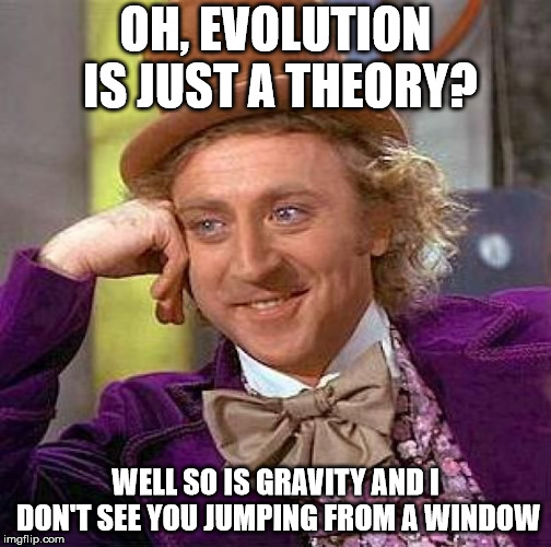 Straw person fallacy | OH, EVOLUTION IS JUST A THEORY? WELL SO IS GRAVITY AND I DON'T SEE YOU JUMPING FROM A WINDOW | image tagged in memes,creepy condescending wonka,sarcastic wonka,logical fallacy referee,nasty,rude | made w/ Imgflip meme maker
