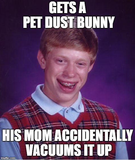 Bad Luck Brian Meme | GETS A PET DUST BUNNY HIS MOM ACCIDENTALLY VACUUMS IT UP | image tagged in memes,bad luck brian | made w/ Imgflip meme maker