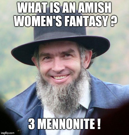 Amish | WHAT IS AN AMISH WOMEN'S FANTASY ? 3 MENNONITE ! | image tagged in amish | made w/ Imgflip meme maker