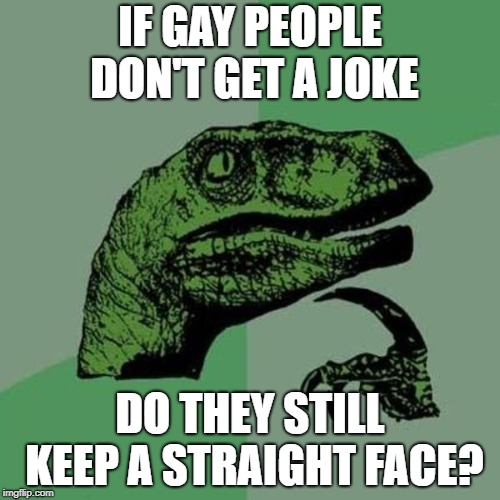 raptor | IF GAY PEOPLE DON'T GET A JOKE DO THEY STILL KEEP A STRAIGHT FACE? | image tagged in raptor | made w/ Imgflip meme maker