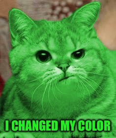 RayCat Annoyed | I CHANGED MY COLOR | image tagged in raycat annoyed | made w/ Imgflip meme maker