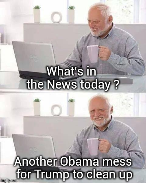 Obama's buddies the ICC and PLO are back | What's in the News today ? Another Obama mess for Trump to clean up | image tagged in memes,hide the pain harold,war criminal,soldiers,attack,usa | made w/ Imgflip meme maker