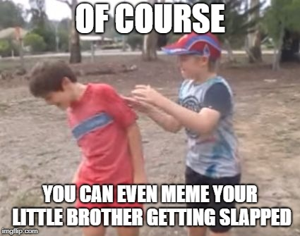 Skits, Bits and Nits | OF COURSE YOU CAN EVEN MEME YOUR LITTLE BROTHER GETTING SLAPPED | image tagged in skits bits and nits | made w/ Imgflip meme maker