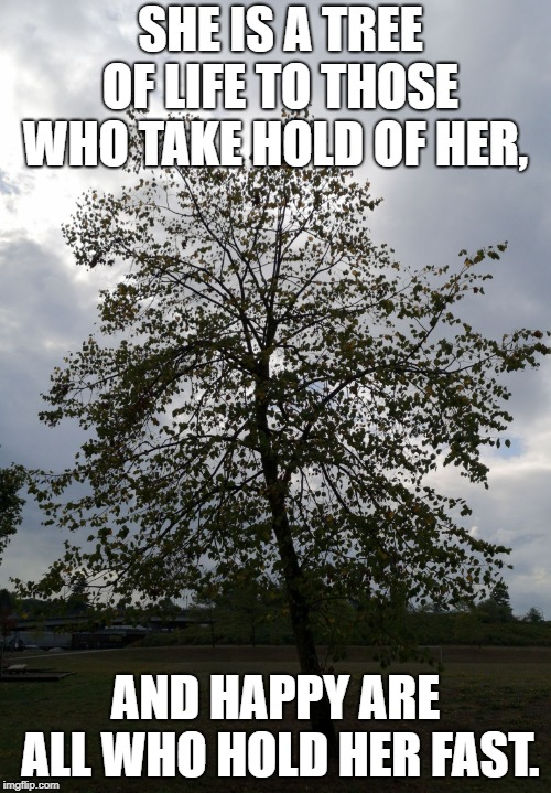 SHE IS A TREE OF LIFE TO THOSE WHO TAKE HOLD OF HER, AND HAPPY ARE ALL WHO HOLD HER FAST. | image tagged in tree of life | made w/ Imgflip meme maker