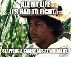 ALL MY LIFE I'S HAD TO FIGHT. . . SLAPPING A SMART ASS AT WALMART. | image tagged in oprah | made w/ Imgflip meme maker