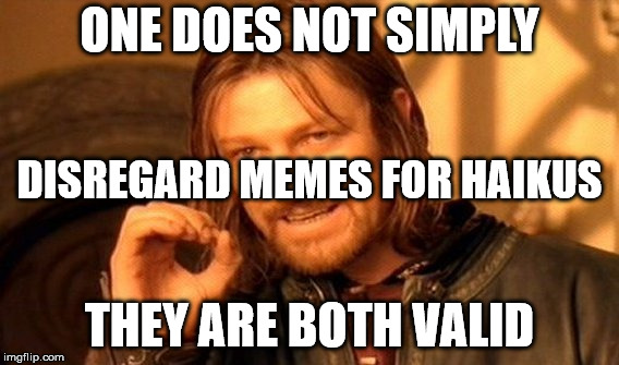 One Does Not Simply Meme | ONE DOES NOT SIMPLY THEY ARE BOTH VALID DISREGARD MEMES FOR HAIKUS | image tagged in memes,one does not simply | made w/ Imgflip meme maker