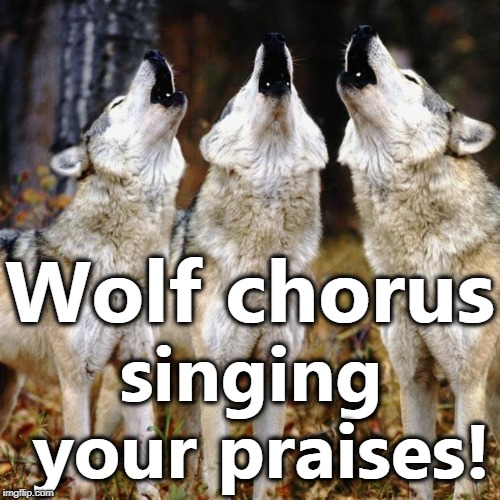 Wolf chorus | Wolf chorus singing your praises! | image tagged in wolf chorus | made w/ Imgflip meme maker