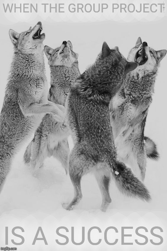Wolf dance | WHEN THE GROUP PROJECT IS A SUCCESS | image tagged in wolf dance | made w/ Imgflip meme maker
