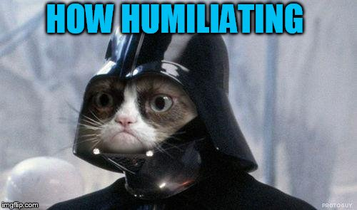 Grumpy Cat Star Wars Meme | HOW HUMILIATING | image tagged in memes,grumpy cat star wars,grumpy cat | made w/ Imgflip meme maker