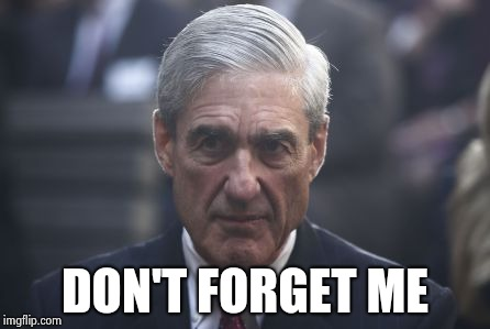 Mueller  | DON'T FORGET ME | image tagged in mueller | made w/ Imgflip meme maker