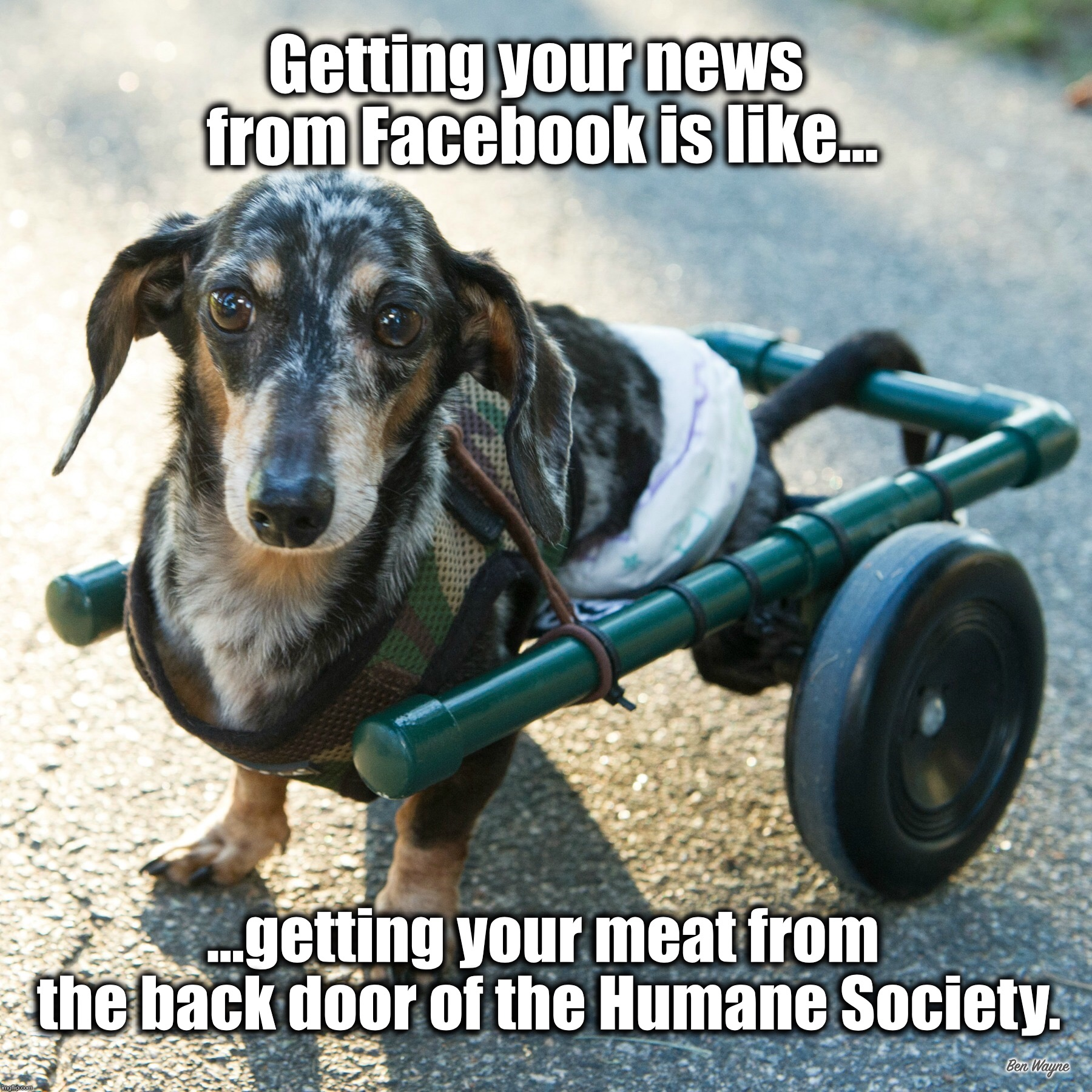 Getting your news from Facebook... | Getting your news from Facebook is like... ...getting your meat from the back door of the Humane Society. Ben Wayne | image tagged in facebook,news,fake news | made w/ Imgflip meme maker