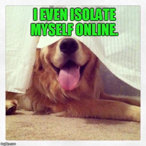 Dog hiding in plain sight  | I EVEN ISOLATE MYSELF ONLINE. | image tagged in dog hiding in plain sight | made w/ Imgflip meme maker