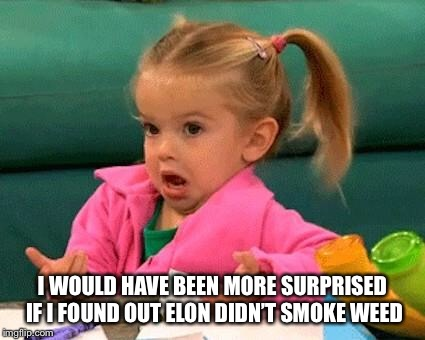 I don't know (Good Luck Charlie) | I WOULD HAVE BEEN MORE SURPRISED IF I FOUND OUT ELON DIDN'T SMOKE WEED | image tagged in i don't know good luck charlie | made w/ Imgflip meme maker