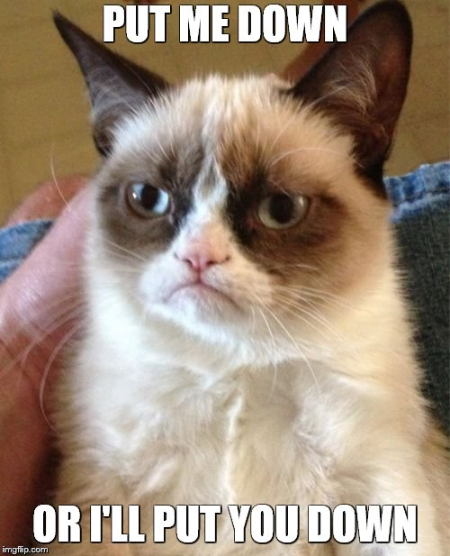 Grumpy Cat Meme | PUT ME DOWN OR I'LL PUT YOU DOWN | image tagged in memes,grumpy cat | made w/ Imgflip meme maker