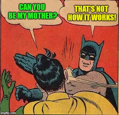 Batman Slapping Robin Meme | CAN YOU BE MY MOTHER? THAT'S NOT HOW IT WORKS! | image tagged in memes,batman slapping robin | made w/ Imgflip meme maker