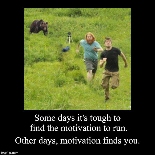 The proper motivation is all you need to ...... | Some days it's tough to find the motivation to run. | Other days, motivation finds you. | image tagged in funny,demotivationals | made w/ Imgflip demotivational maker