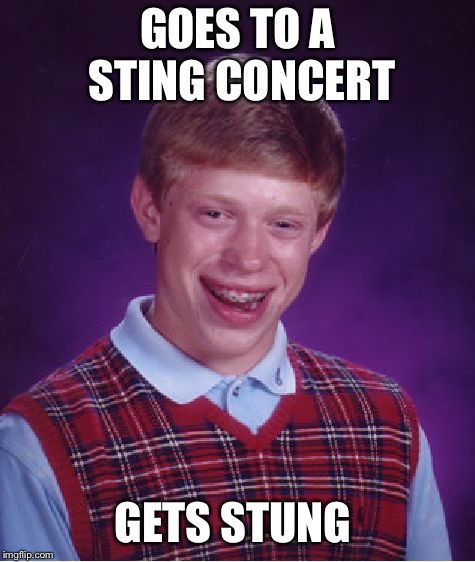 Bad Luck Brian Meme | GOES TO A STING CONCERT GETS STUNG | image tagged in memes,bad luck brian | made w/ Imgflip meme maker