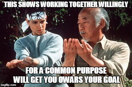 ASIAN TRAINS WHITE BOY | THIS SHOWS WORKING TOGETHER WILLINGLY FOR A COMMON PURPOSE WILL GET YOU OWARS YOUR GOAL | image tagged in karate kid | made w/ Imgflip meme maker