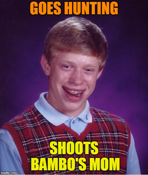 Bad Luck Brian Meme | GOES HUNTING SHOOTS BAMBO'S MOM | image tagged in memes,bad luck brian | made w/ Imgflip meme maker
