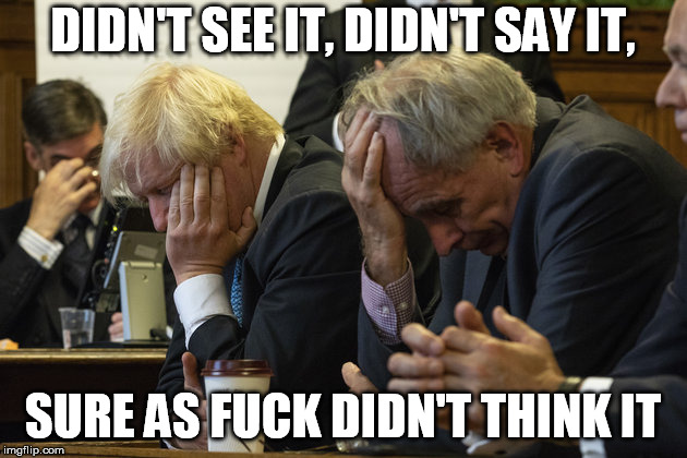 DIDN'T SEE IT, DIDN'T SAY IT, SURE AS F**K DIDN'T THINK IT | image tagged in brexshit | made w/ Imgflip meme maker